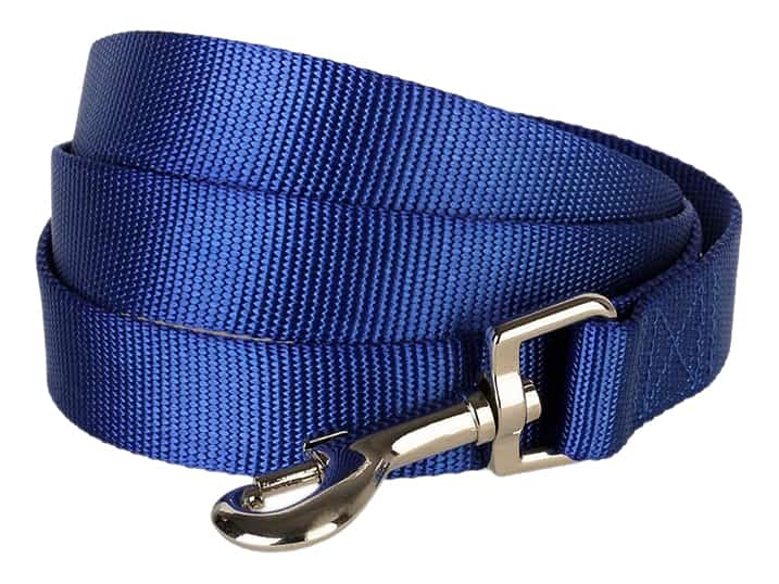 A Blue Leash with Silver Clasp for Collar that is Top of the Goldendoodle Products